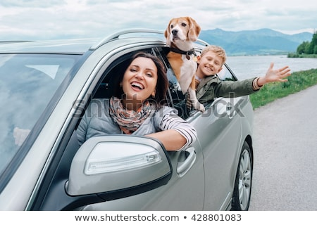 friendly young blond woman driving a car Stock photo © Giulio_Fornasar