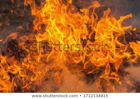 Grande naranja fuego hoguera puesta de sol azul Foto stock © vapi