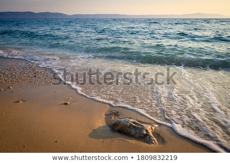 nice detail of ocean waves on coast stock photo © x-etra
