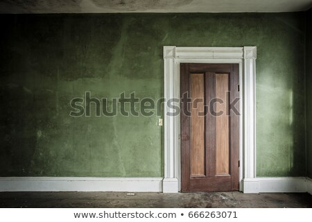 Ancient closed wooden door  Stock photo © grafvision