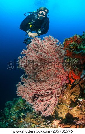 Man snorkeling underwater on a reef with soft coral and tropical fish Stock photo © galitskaya