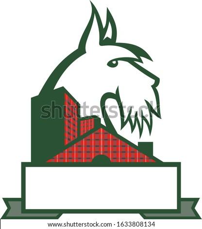 Scottish Terrier Tartan Building Mascot Stock photo © patrimonio