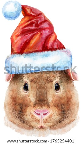 Watercolor portrait of Teddy guinea pig with Santa hat on white background Stock photo © Natalia_1947