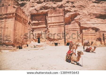 Jordania viaje camellos monasterio ruinas ron Foto stock © Maridav