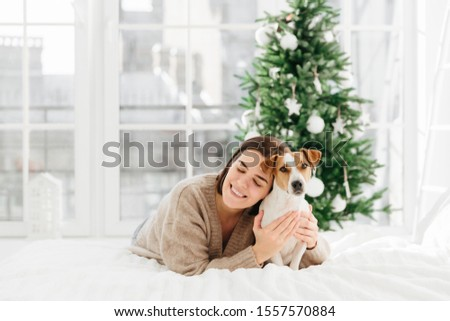 Festive mood, friendship, love between people and animals. Pleased smiling brunette woman in warm sw Stock photo © vkstudio