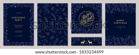 Christmas nowego rok niebieski kwiatowy charakter Zdjęcia stock © Anneleven