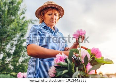 портрет · счастливым · старший · женщину · цветы - Сток-фото © boggy