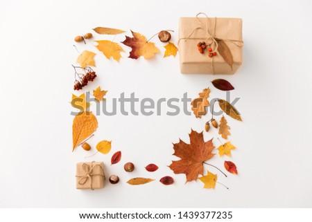 gift box, autumn leaves, acorns and rowanberry Stock photo © dolgachov