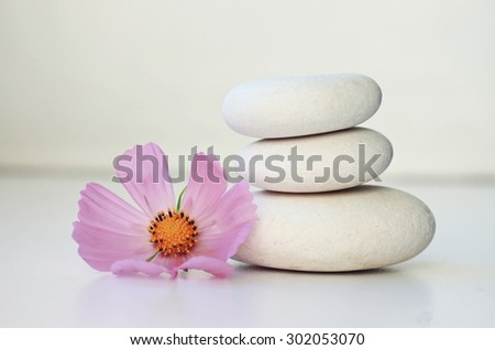 Flower petal resting on rounded pebbles. Stock photo © ElinaManninen