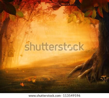 Foto stock: Resumen · halloween · fondos · espacio · de · la · copia · diseno · árbol