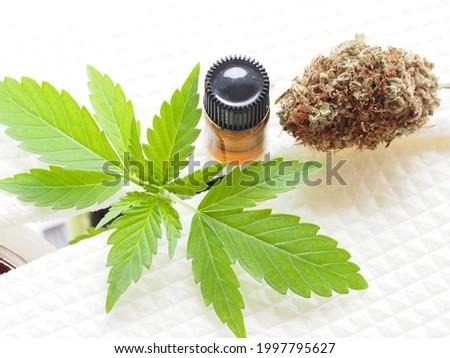 Maconha canabis objetos branco médico Foto stock © jeremynathan