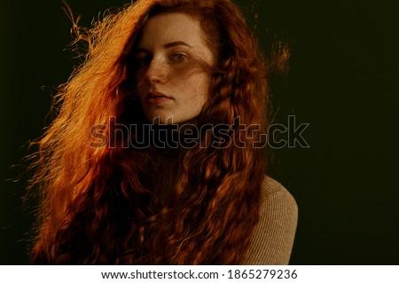 mooie · vrouw · grijs · trui · jeans - stockfoto © disorderly
