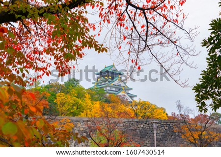 Autunno colore parco alberi nice naturale Foto d'archivio © jonnysek