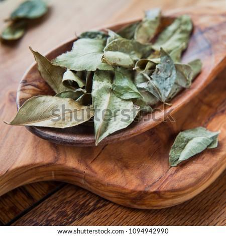 Secas caril folhas cinza cópia espaço Foto stock © szefei