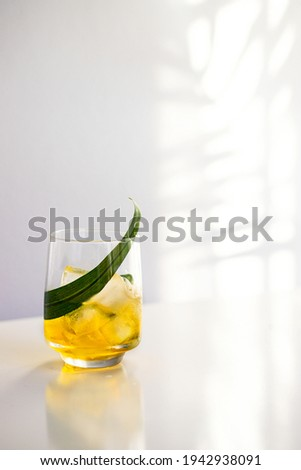 Negroni Cocktail in modern glass with ice cubes and orange slices with straw on white background wit Stock photo © DenisMArt