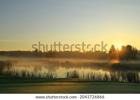 Ver belo campo de golfe manhã névoa Foto stock © CaptureLight