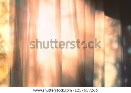 Shadow of tree through the blinds Stock photo © furmanphoto