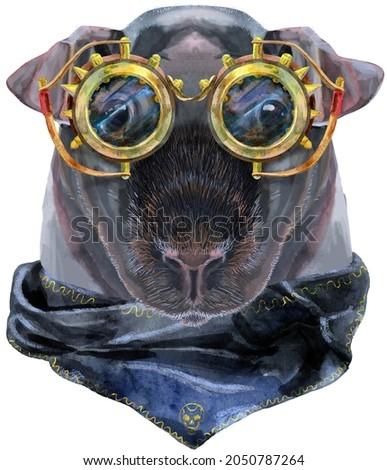 Akwarela portret chudy świnka morska steampunk okulary Zdjęcia stock © Natalia_1947