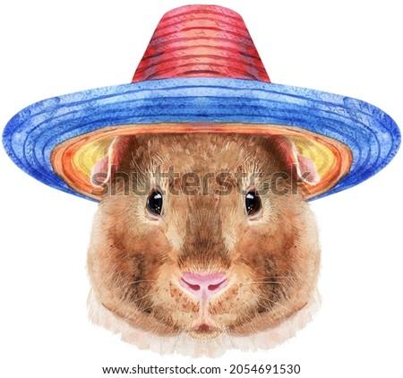 Watercolor portrait of Teddy guinea pig in sombrero hat on white background Stock photo © Natalia_1947