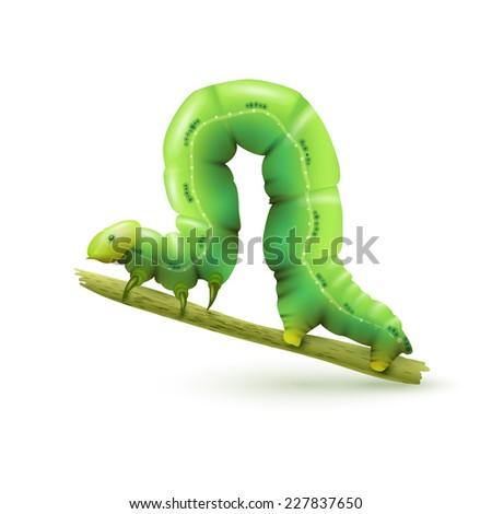 Green caterpillar on a plant stalk Stock photo © adrian_n