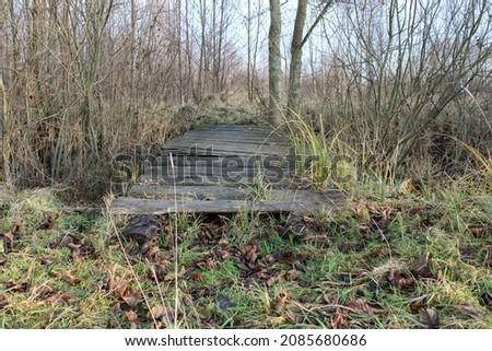 natureza · trilha · pequeno · conselho · ponte - foto stock © Mps197