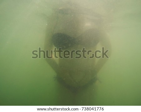 Pregnant woman performing underwater exercise Stock photo © stevanovicigor