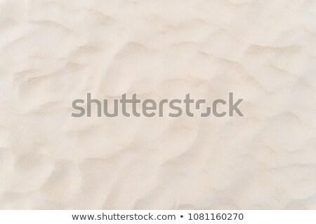 White fine sand texture Stock photo © vapi