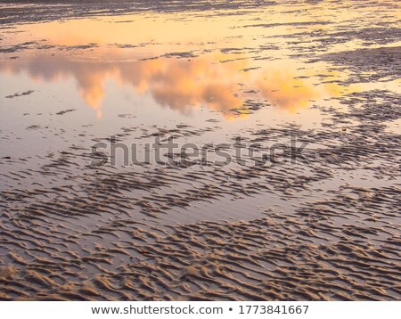 Mirrored coastal reflections in wet beach sand at sunrise Stock photo © lovleah