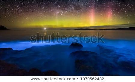 Bioluninescence and stars in Australia Stock photo © lovleah