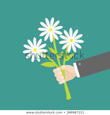 Personas naturales regalo flores data vector Foto stock © robuart