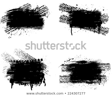 Zwart wit auto gras witte weide zebra Stockfoto © Paha_L