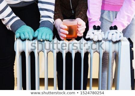 Scump încălzire bani termostat iarnă energie Imagine de stoc © kalozzolak