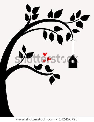 Foto stock: árvore · vetor · aves · primavera · edifício