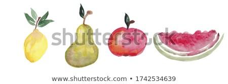 акварель · арбуза · ручной · работы · продовольствие · фрукты - Сток-фото © Galyna