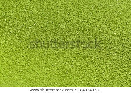 Buğday çimi toz ek plastik kepçe Stok fotoğraf © PixelsAway