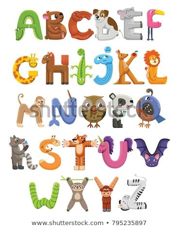 Animal alphabet with cat Stock photo © kariiika