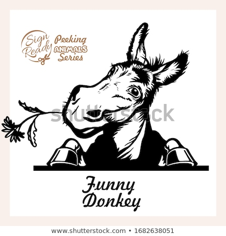 Donkey head cartoon  Stock photo © dagadu