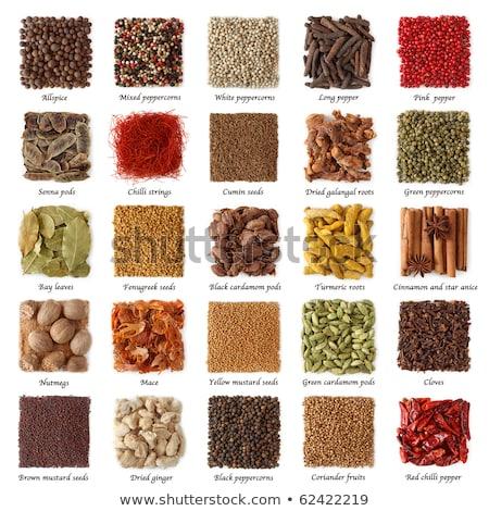 noix · de · muscade · feuilles · vertes · blanche · alimentaire · vert · médecine - photo stock © loochnik