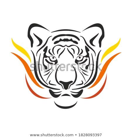 Tattoo-stylized flame tongues Stock photo © fixer00
