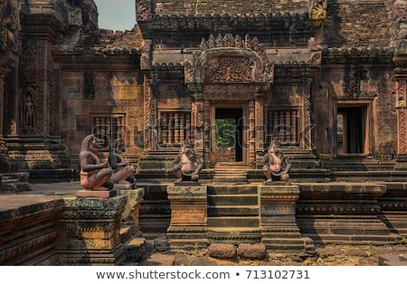 Guardião templo Camboja 2012 surpreendente rosa Foto stock © hangingpixels