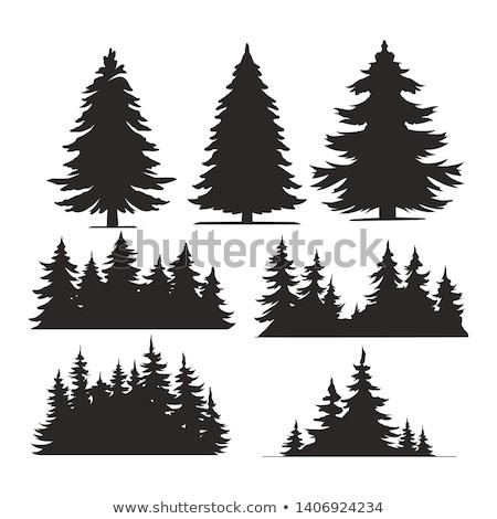 boom · silhouet · berg · hemel · natuur · bomen - stockfoto © gordo25