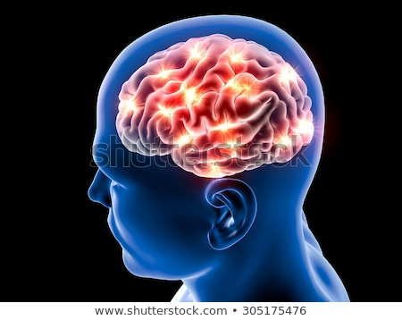 Emberi agy orvosi kutatás memóriazavar Alzheimer szimbólum Stock fotó © Lightsource
