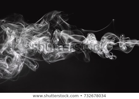 abstraction white smoke swirls shape and curves stock photo © arsgera