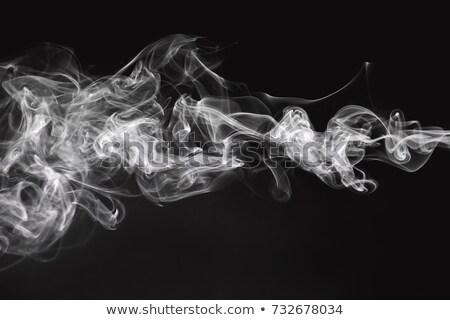 Abstração branco fumar forma curvas Foto stock © Arsgera