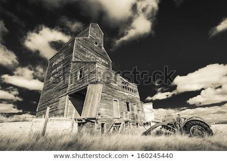 Vieux ferme tracteur champ d'herbe prêt caution Photo stock © enterlinedesign