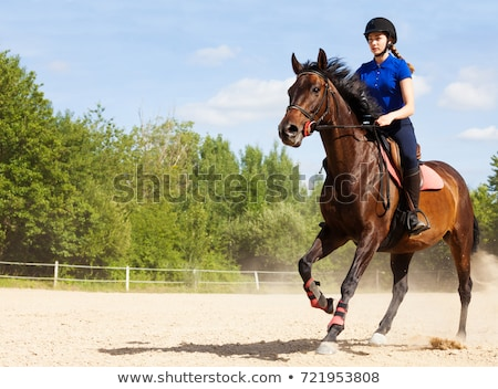 female rider trains the horse in the riding course Stock photo © meinzahn