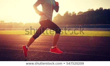 Red and blue running sport shoe Stock photo © Anterovium
