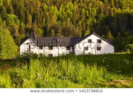 nieuwe · huisvesting · weide · mooie · landschap · voorjaar - stockfoto © meinzahn