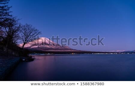 世界 遺産 富士山 早朝 自然 光 ストックフォト © shihina