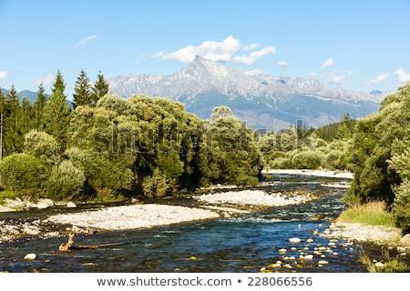 Krivan Mountain and Koprovsky brook, High Tatras, Slovakia Stock photo © phbcz
